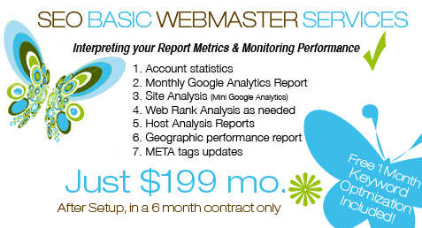 SEO Basic Webmaster Services package information