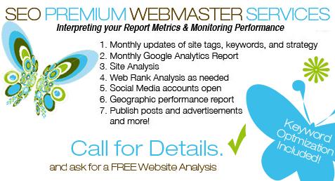 SEO premium webmaster services details